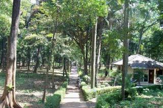 http://www.teluklove.com/2017/04/pesona-keindahan-wisata-hutan-kota.html