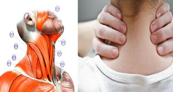 elimina durerile de spate cu aceste exercitii
