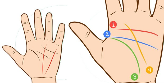 palmreadings-how-to-read-palm