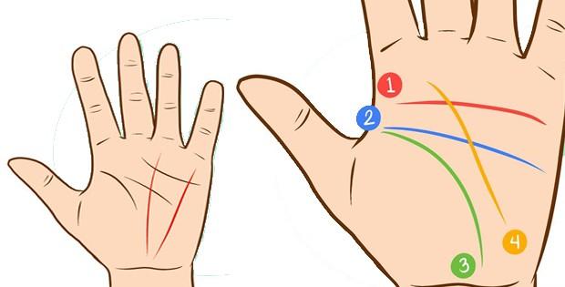palmreadings-how-to-read-palm