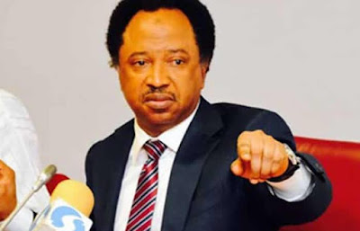 Senator Shehu Sani Appears Before Police Over Murder Allegation