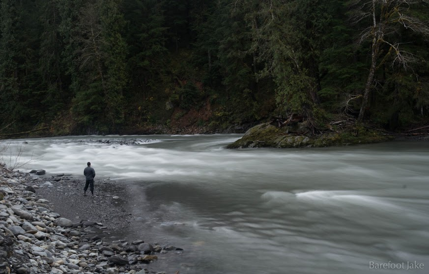 north fork quinault river