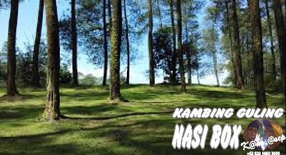 Hutan Jayagiri Lembang