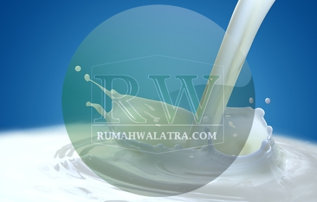 Ragam Manfaat Susu Kambing Untuk Kesehatan