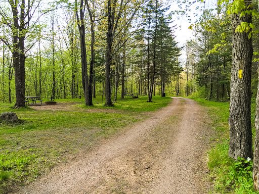 The trail runs through campgrounds at Camp New Wood County Park