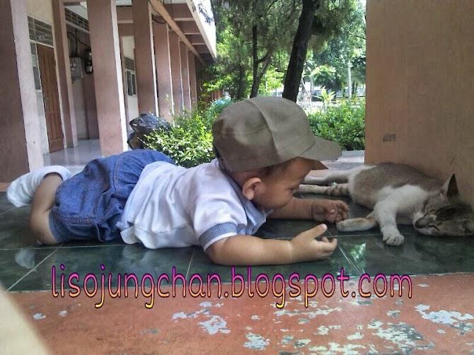 Bolehkah anak bermain dengan binatang kesayangan?