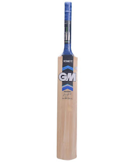 GM Cricket Bat