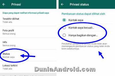 setelan privasi update status WA