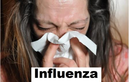 virus influenza; flu; influenza adalah; influenza virus; influenza disebabkan oleh; influenza menular melalui; influenza artinya; influenza pdf; influyenza pandemic;