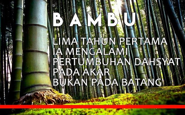 Pompa Semangat Dengan Filosofi Bambu, Waspada!!! Kalau Kerja Sekedar Kerja, Kera Juga Bekerja