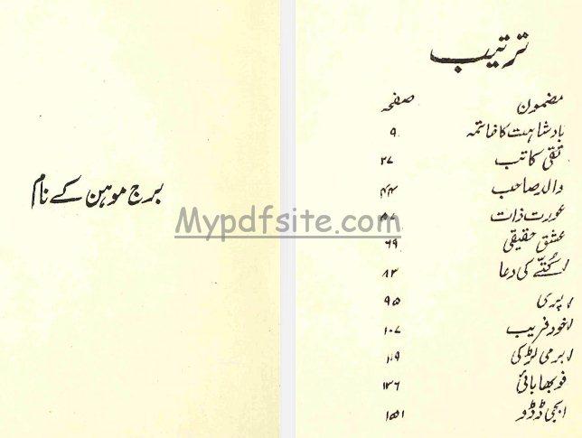 badshahat-ka-khatma book