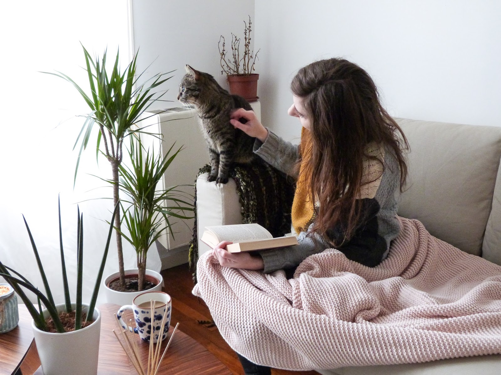 My favourite books to read on cosy nights in
