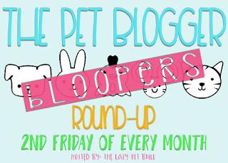Fotos Plus 4 Bonus Bloopers