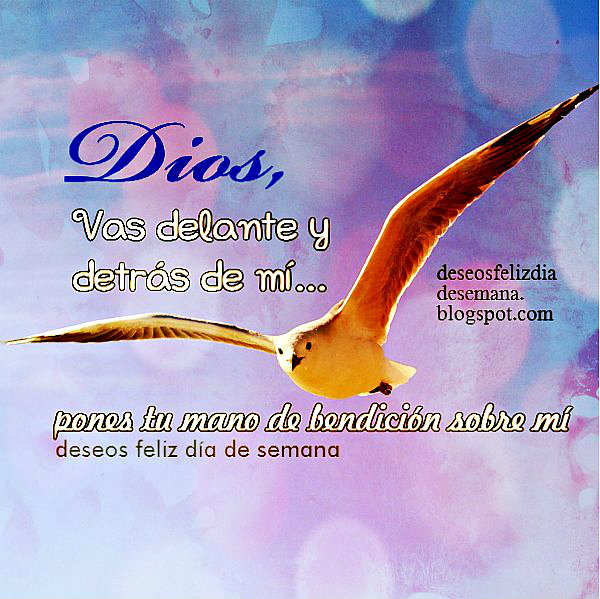 Dios me da su bendición, Gracias al Señor por estar conmigo, Acción de gracias, frases cristianas con imagen por Mery Bracho. Oración de la mañana.