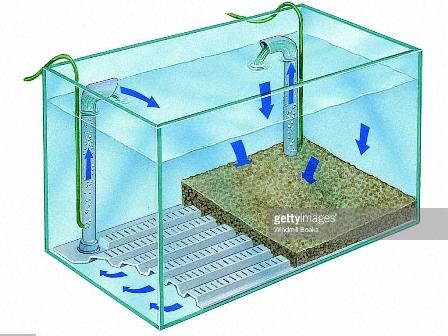 Filter Kolam Juga Bisa Dipakai Jika Ukuran Akuarium Kamu Cukup Besar Di Atas 500 Liter