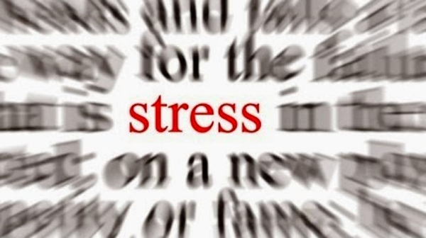 Jangan Sedih, 6 Makanan ini Bisa Mengatasi Stres