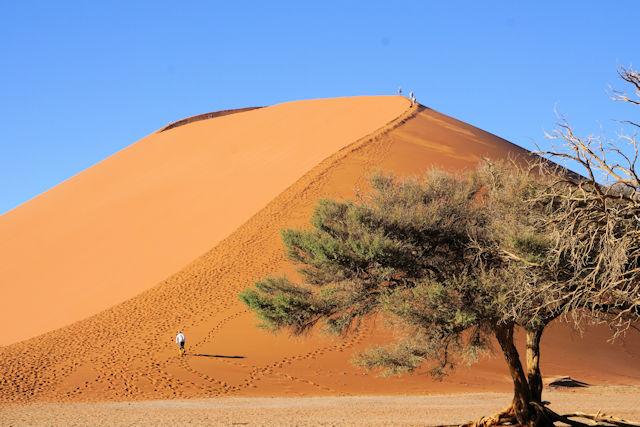 Namib Sossusvleis Dune 45 (C) Kundenfoto