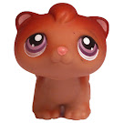 Littlest Pet Shop Multi Packs Ferret (#260) Pet