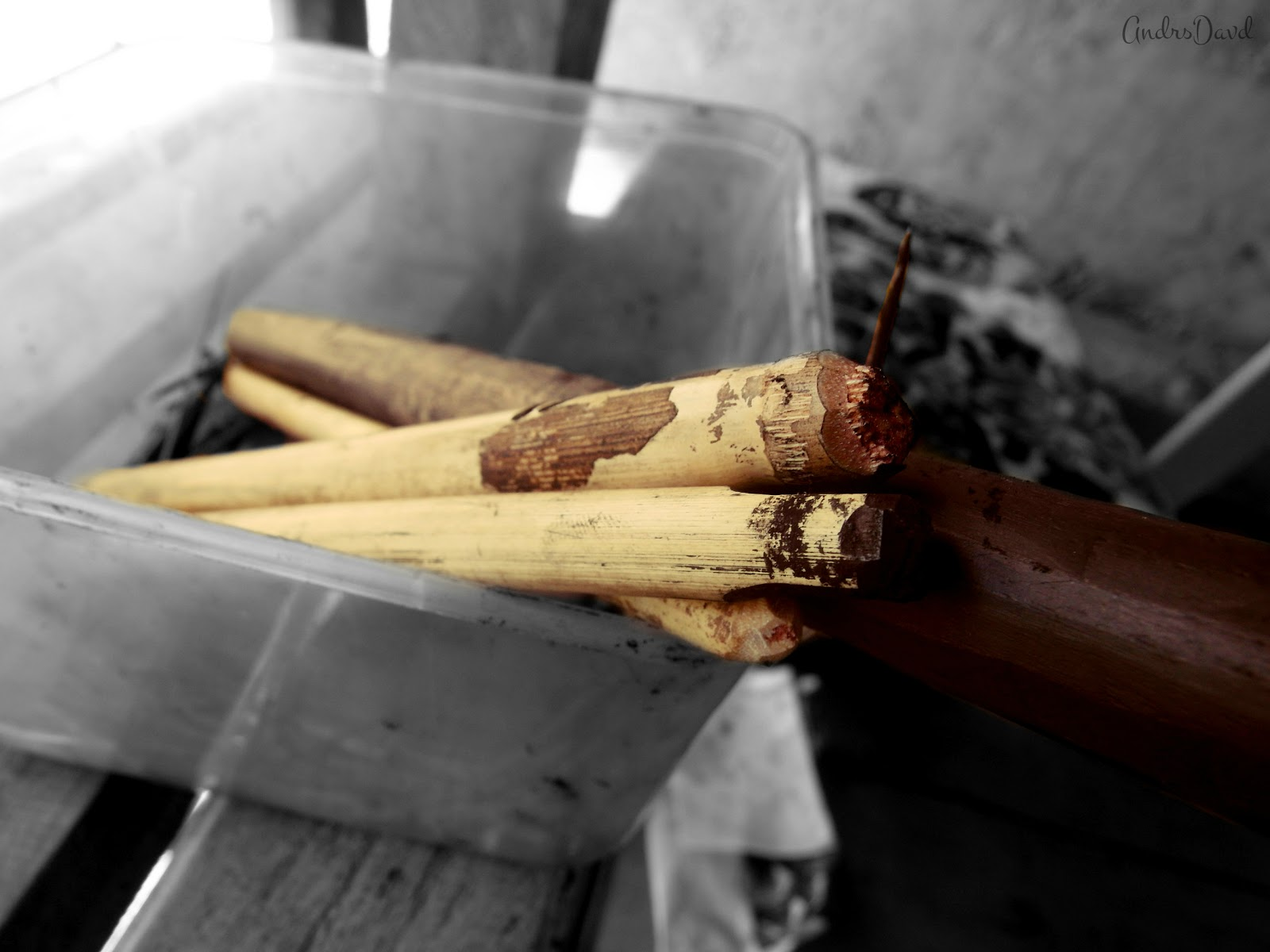 "Tools used in the art of ""Batok"": Bamboo and wooden stick, thorn from Pomelo tree"
