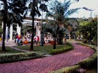 Tukang Taman Jakarta kelapa gading | www.ahli-tamanjakarta.com