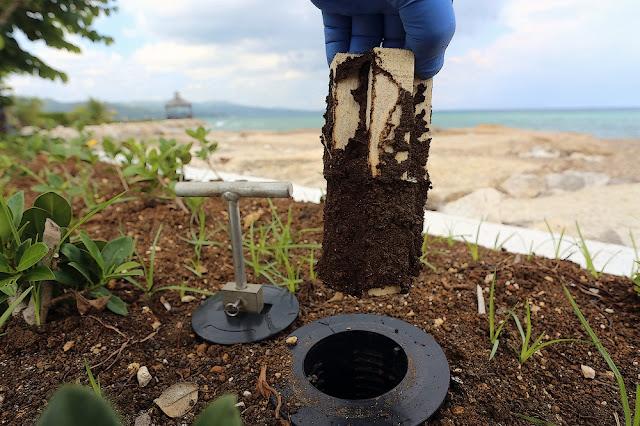 MASSIM tratamientos contra termitas valladolid