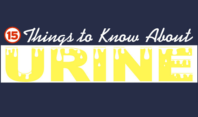Image: 15 Things to Know About Urine