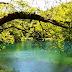 Ειδυλλιακό Σκηνικό .... Στη Γαλάζια Λίμνη Των Πηγών Του Λούρου Ποταμού[Βίντεο]