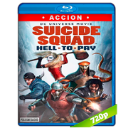 Escuadrón suicida: Deuda infernal (2018) BRRip 720p Audio Dual Latino-Ingles