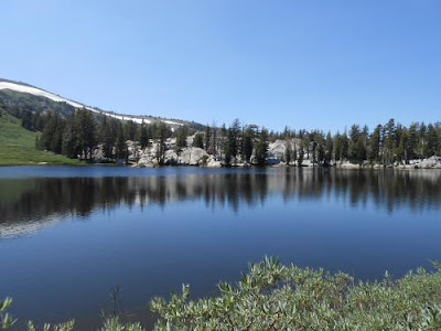 natural growth, spiritual growth, showers lake, PCT
