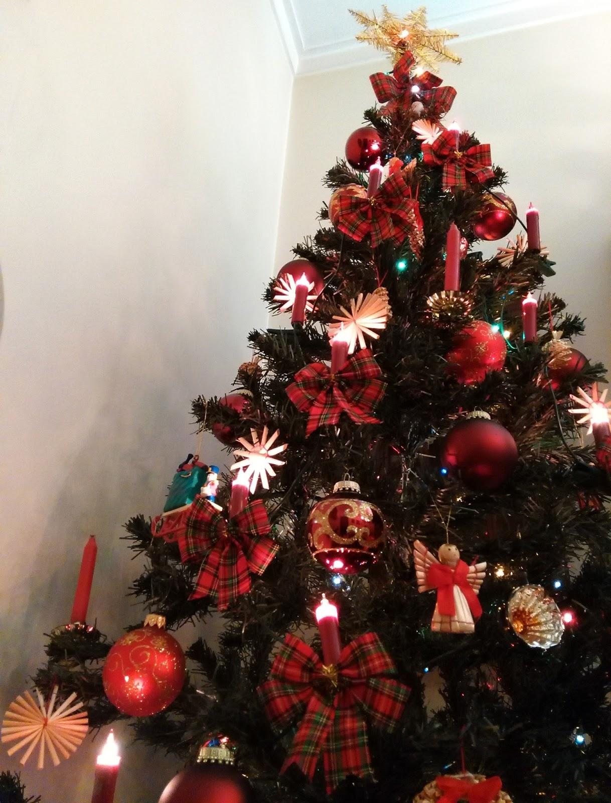 Histórias Com História A Origem Da árvore De Natal Em Portugal