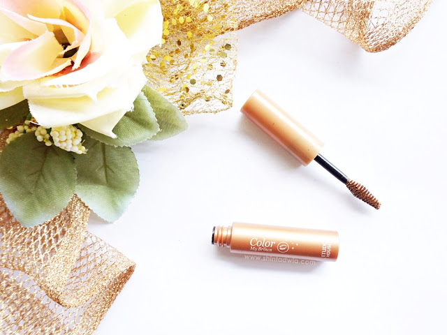 review etude house color my brows