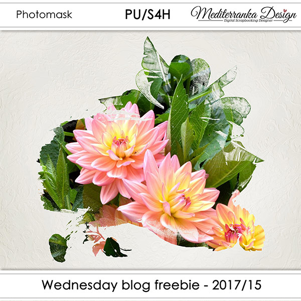 WEDNESDAY BLOG FREEBIE - 2017/15