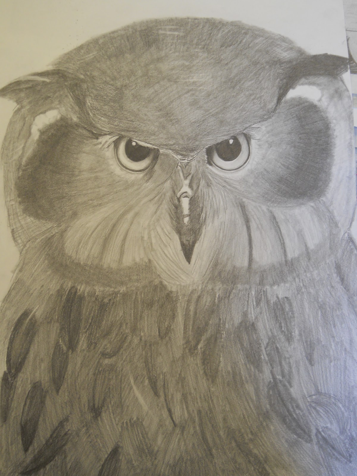 Pencil And In Color Drawing: Creative Expressions: Wild Animal Drawings In Pencil And