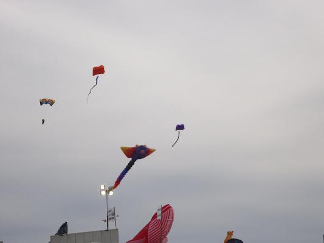 Kite Exhibit