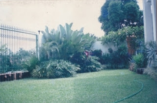 Galeri Taman - Tukang Taman Surabaya 30