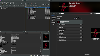 Picard Music Tagger tagging and organizing an album to be played back by KDE's Elise Music Player