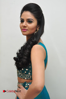 Sree Mukhi Pictures at Gentleman Audio Launch  0095