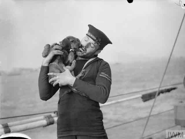Monkey mascot on HMS Bangor, 28 October 1941 worldwartwo.filminspector.com