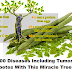 Cure 300 Diseases Including Tumors And Diabetes With This Miracle Tree!