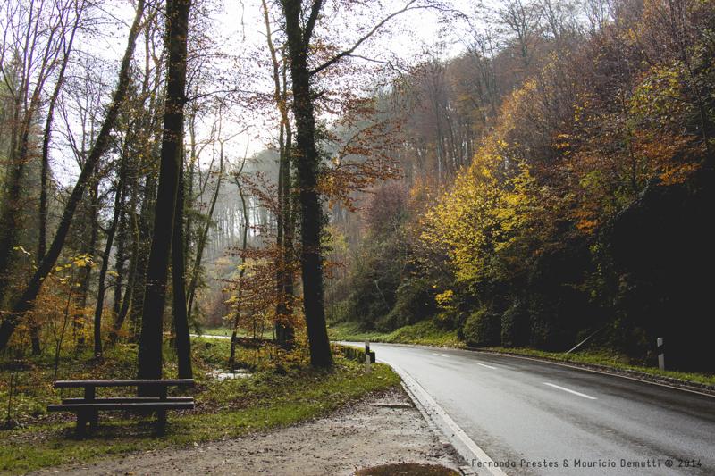 estrada de Mullerthal