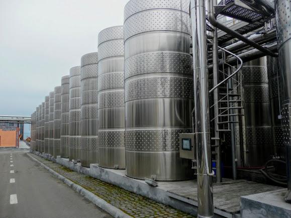 Шабо. Центр культуры вина. Выдержка и хранение вин