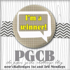 Paper Girls Challenge #175 WINNER~!