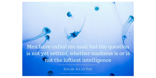#Quote of the Day: Edgar Allan Poe on Madness and #Intelligence #amwriting