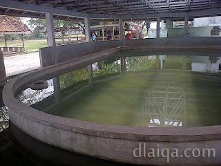 kolam dengan atap