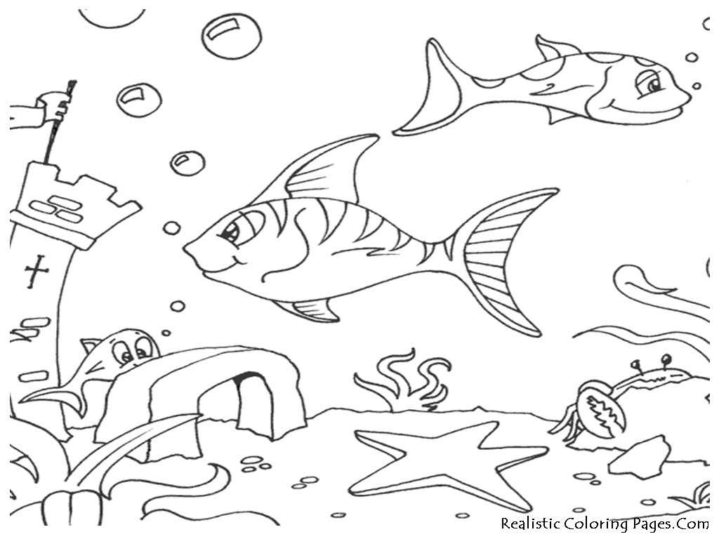 ocean fish coloring pages realistic coloring pages. Black Bedroom Furniture Sets. Home Design Ideas