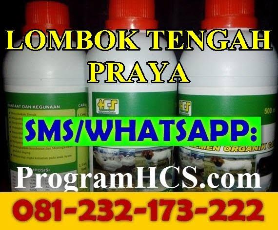 Jual SOC HCS Lombok Tengah Praya