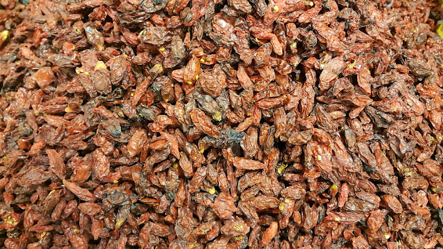 Winter is here, get the fruit teas ready! Dried fruit for the teas