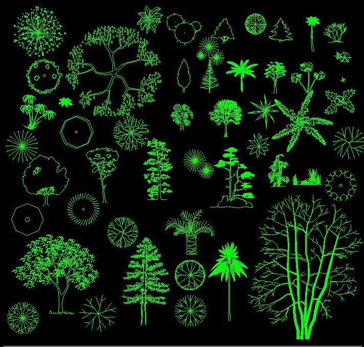 Tree Blocks DWG
