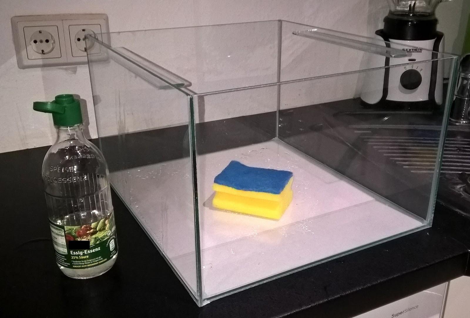 ikea expedit aquarienanlage garnelenforum. Black Bedroom Furniture Sets. Home Design Ideas