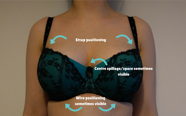 A front-on image of someone wearing a bra, labelled with the fit aspects visible at this angle.